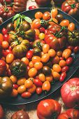 Fresh Colorful Ripe Tomatoes, Selective Focus. Fresh Colorful Ripe Fall poster