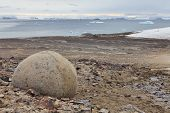 Mysterious boulders and pebbles of Champ Island, Franz Jozef Land - An almost unique phenomenon, eve