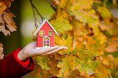 Female Hand Holding House Toy Near Oak Branch In Autumn Season Park poster
