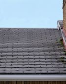 Leaky Roof1