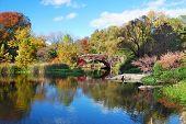 Parque Central de Nueva York Manhattan panorama en Lago de otoño con puente rascacielos y colorido tr