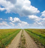 Dirt Road Through The Prairie