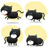Cartoon Black Cat Set