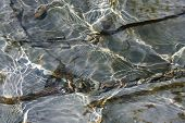 Flat Cracked Rock Textures Under Flowing Rippled Water.