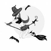 Pretty Pin Up Witch On A Broom