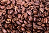 pic of coffee grounds  - Closeup of coffee beans - JPG
