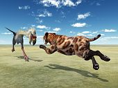 stock photo of saber tooth tiger  - Computer generated 3D illustration with the Phorusrhacos and the Smilodon - JPG