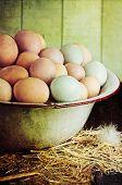 Rustic Farm Raised Eggs