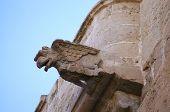 Gothic Gargoyle in Palermo, Sicily