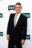 LOS ANGELES - MAY 22:  Andy Cohen arrives at the Bravo Media's 2013 For Your Consideration Emmy Even