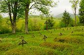Topola, Slovakia - war cemetery from WWI