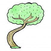 picture of twisty  - cartoon twisty tree - JPG