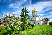 Zvenigorod Town