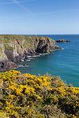 Caerfai Bay Pembrokeshire Wales UK
