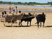 Landleben in Madagaskar