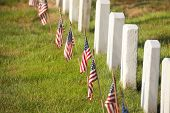 American Flags Near Gravestones At Arlington National Cemetery In Virginia