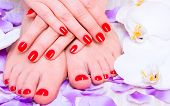 stock photo of pedicure  - manicure and pedicure - JPG
