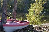Parked kayaks