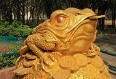 Feng Shui Frog Hold Coin In The Mouth