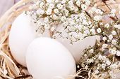 Plain Undecorated Easter Eggs In A Nest