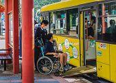 Loop Bus in Nara
