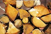 Chopped logs for firewood.