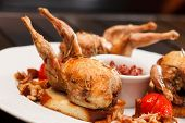 stock photo of quail  - baked quail - JPG
