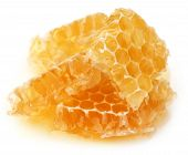 Honey Comb With Fresh Honey