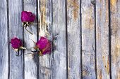 Dry  Rose Petals  On Old Wooden Board