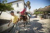 HYDRA, GREECE - MAY 7, 2014: Unidentified man leads a donkey at the Greek island, Hydra. They are th