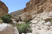Muqal Cave In Wadi Bani Khalid