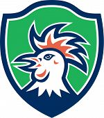 Cockerel Rooster Head Shield Retro