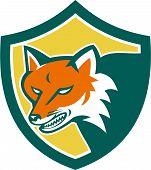 Red Fox Angry Head Shield Retro