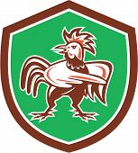 Chicken Rooster Angry Pointing Shield Retro