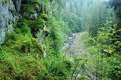 Blanice River In Bohemia