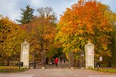 GDANSK, POLAND - NOVEMBER 5, 2014: Autumn in the Park Oliwski and gardens in Gdansk, Poland. Park Oliwski is the biggest heritage park in Gdansk with area of 11,3 ha (113 000 m2).