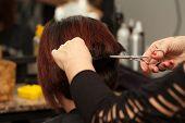 Hair Cut In Hairdresser Salon