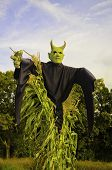 Scarry demon in a corn field