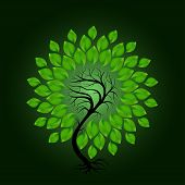 Vector Tree With Green Leafage