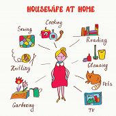 Household interests of woman - infographics funny
