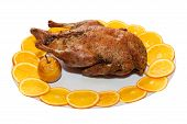 Roasted Duck; Clipping Path