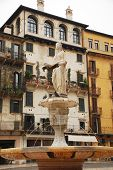 The Madonna Verona
