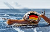 Snail With The Colors Of Germany Flag Encouraged By Another Country