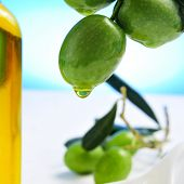 closeup of a branch of olive tree with olives and a bottle of olive oil in the background
