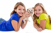 picture of twin baby girls  - happy twin sister kid girls and puppy dog lying playing on white background - JPG
