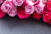 red and pink  roses  on table