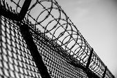 pic of barricade  - Prison Fence in Black and White - JPG