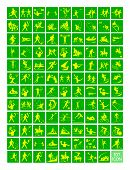 pic of luge  - Illustration Collection of 107 Winter and Summer Sport Icons in Yellow and Green Colors - JPG