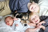 picture of snuggle  - Three happy young children including a newborn baby girl a toddler and their big brother are laying in bed snuggling with their pet dog - JPG