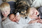 stock photo of snuggle  - Three happy young children including a newborn baby girl a toddler and their big brother are laying in bed snuggling with their pet dog - JPG